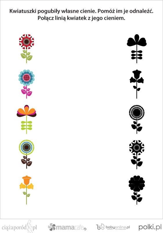 Połącz cienie z obrazkami - zagadka dla dzieci | Mamotoja.pl