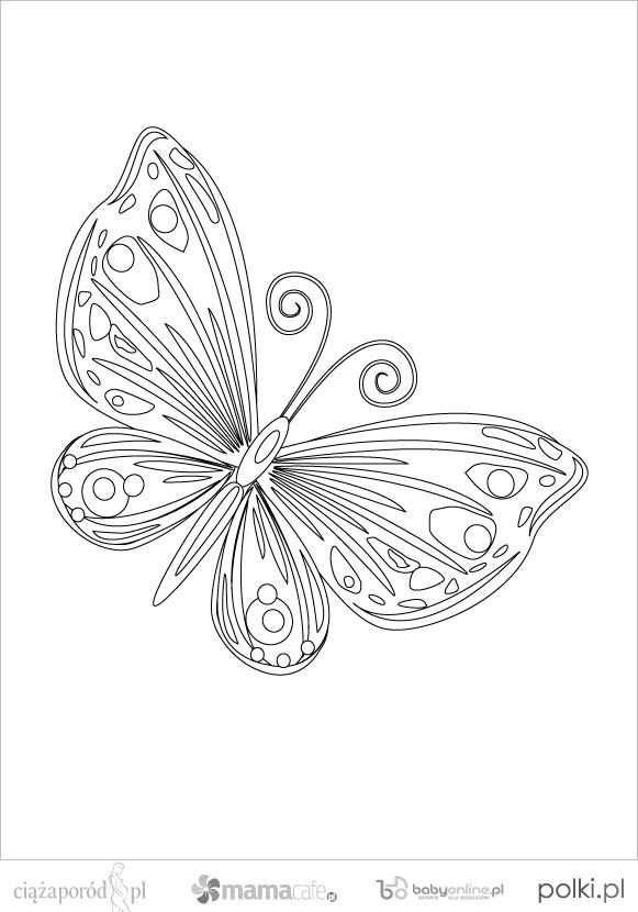 Wiosenne Kolorowanki Motyle Kolorowanki Dla Dzieci Strona 1