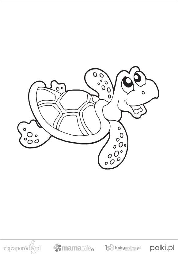 kolorowanki zwierzęta morskie, kolorowanki dla dzieci, kolorowanki do wydruku