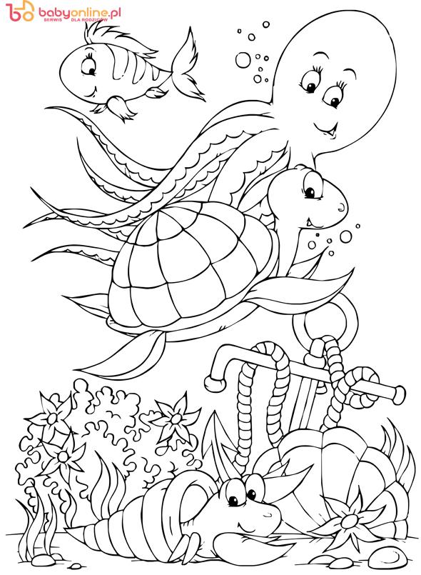 kolorowanki żółwie, kolorowanki dla dzieci, kolorowanki do wydruku, żółwie